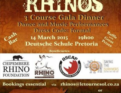 Dancing for Rhinos: Inspired by Thandi